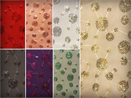 Sequin Scallop Edges Fabrics