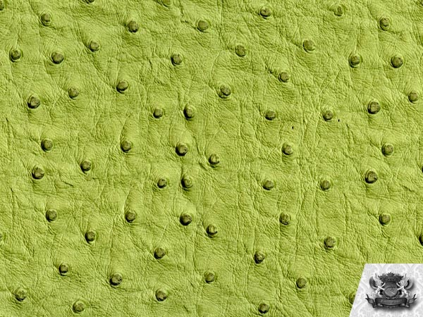 Vinyl Ostrich Emu Lime Fake Leather Upholstery Fabric By The Yard